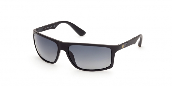 WEB EYEWEAR WE0293 02D